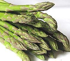 Planting tips for the 1yr old asparagus crowns