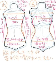 Illustration course for drawing a chest! How to draw a breast with the ribs and … Illustration course for drawing a chest! How to draw a breast with the ribs and hips in your eye? Body Reference Drawing, Drawing Reference Poses, Anatomy Reference, Drawing Tips, Manga Drawing, Drawing Female Body, Hair Reference, Drawing Tutorials, Body Anatomy