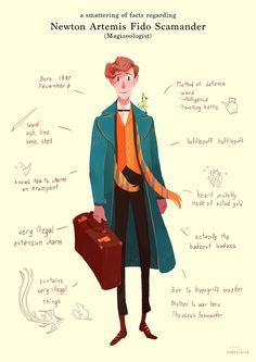 harry potter wizarding world Harry Potter Fan Art, Harry Potter Universal, Harry Potter Fandom, Harry Potter World, Harry Potter Memes, Yer A Wizard Harry, Fantastic Beasts And Where, Hogwarts, Percy Jackson