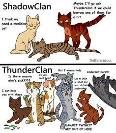 Warrior Cats Funny, Warrior Cats Comics, Warrior Cat Memes, Warrior Cats Series, Warrior Cats Books, Warrior Cat Drawings, Warrior Cats Fan Art, Cat Comics, Warrior Cats Quiz
