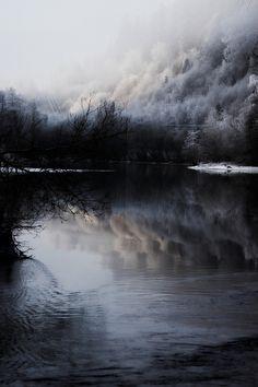 0rient-express:Winter forest (byÅsmund Isaksen).