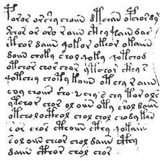 Echantillon de texte du manuscrit de Voynich.