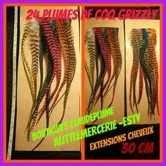 Retrouvez cet article dans ma boutique Etsy https://www.etsy.com/be-fr/listing/498217734/24-plumes-multicolores-extensions
