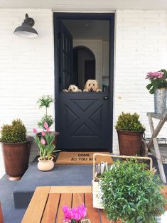How do you feel about dutch doors? There are so many different functional aspects to them! Check these doors out here and see if you would get one!