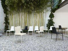 Petra chair by Ligne Roset Ligne Roset, Petra, Indoor Outdoor, Outdoor Decor, Outdoor Dining Chairs, Dining Table, Dining Furniture, Outdoor Furniture Sets, Eco Design