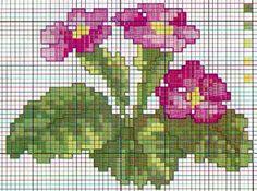 Schema punto croce Fiori Primula