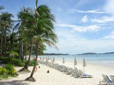 Koh Samui - What a way to relax, get your creative juices flowing and clear your head space. When was the last time you got out of your office? For some, this is their office...