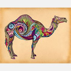 Camel 14x11, now featured on Fab.