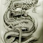 Oriental Dragon Tattoo Style (9)
