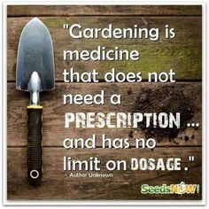 Garden Sayings Signs On Pinterest Garden Signs Garden