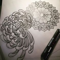 Chrysanthemums for Daisy. #tattoo #tattoodesign #tattooart #art #drawing…