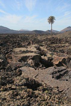 Malpaís, Lanzarote Time And Tide, Island Design, Beach Bars, Spain And Portugal, Canario, Island Beach, Canary Islands, Homeland, Geology