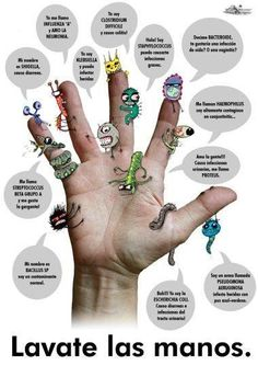 Please Wash Your Hands! Spanish Classroom, Teaching Spanish, Teaching Kids, Health And Wellness, Health Fitness, Hand Hygiene, Science, Weight Loss Goals, Learning
