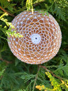 Pine Needle Crafts, Pine Needle Baskets, Braids With Weave, Textiles, Pine Needles, Nature Crafts, Basket Weaving, Beading, Bucket