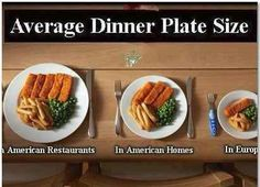~Average Dinner Plate Size~ the stomach is only the size of your fist.