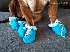 crochet free dog booties pattern - good for snow when our dogs' feet get cold!