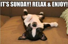 Yes, Sunday is for relaxation...not having to listen to the neighbor hammering away at 9:15 am. Ugh!