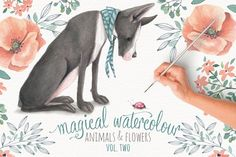 Magical Watercolor graphics Volume 2 by Lisa Glanz on @creativemarket