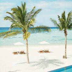 Where to go on holiday in March: 20 top destinations Maldives Honeymoon, Maldives Resort, Romantic Honeymoon Destinations, Amazing Destinations, Travel Destinations, Hotels And Resorts, Best Hotels, Winter Sun Holidays, Winter Beach