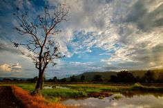 Picture of the day rural Thailand by Alex Shcherbakov