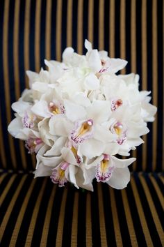 Orchids! So elegant. All white cymbidium orchids hold up well in the tropics