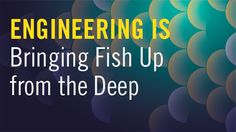 KQED provides public radio, television, and independent reporting on issues that matter to the Bay Area. We're the NPR and PBS member station for Northern California. Engineering Technology, Deep Sea, Bring It On, Ocean, Science, Collections, Fish, Reading, Books