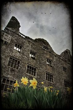 """Leamaneh Castle, County Clare  The castle was originally a basic, multi-storied Irish tower house which was built circa 1480, probably by Turlogh Donn, one of the last of the High Kings of Ireland and a direct descendant of Brian Boru. The castle's name """"Leamaneh"""" is believed to be derived from the gaelic """"léim an éich"""" which, when translated into English means """"the horse's leap"""". Tower House, Castle House, Beautiful Castles, Beautiful Places, Brian Boru, Ireland Castles, St Brigid, County Clare, Irish Eyes"""