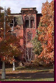 Brush Park Ruins in Detroit,MI.