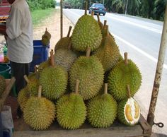 Things You Need to Know about Durian Fruit | Home and Gardening