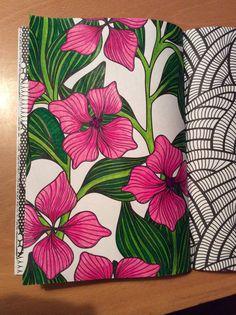 Flower Art Drawing, Doodle Art Drawing, Painting & Drawing, Art Drawings, Mandala Doodle, Mandala Art Lesson, Dibujos Zentangle Art, Zentangles, Arte Yin Yang