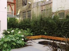 How the foreground quite overshadows the back ground.  Curran House by Andrea Cochran Landscape Architecture , via Behance