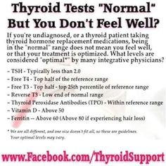 Most conventional doctors rely on TSH as the gold standard to measure thyroid functioning. Many mainstream doctors do not run a full thyroid panel that should at least include Free T4, Free T3, Reverse T3, and thyroid antibodies. Unfortunately TSH alone does not provide a complete picture.If doctors are going to rely on TSH alone, …
