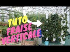 Fabriquer sa Tour de Fraise Hydroponique pour moins de 10€ ! - YouTube