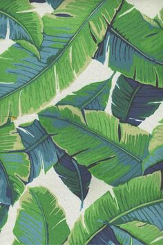 """Balmoral OD 