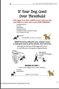 Grisha Stewart's BAT method: What to do if  your dog goes over threshold