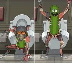 Rick & Morty, ( The Invincible Pickle Rick )