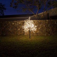 Find the Perfect Landscape Lighting Design for Your Backyard Patio Lighting, Tree Lighting, Landscape Lighting Design, Christmas Landscape, Shades Of Gold, Yard Landscaping, Christmas Decorations, Backyard, House Design