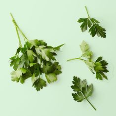 Remedies For Water Retention Nibble On Parsley - Here's why your belly gets so puffy — and how to deflate, fast. Home Remedies, Natural Remedies, Apple Cider Vinegar Remedies, Water Retention Remedies, All About Water, Bloating Remedies, Natural Fat Burners, Hormonal Changes, Liver Disease