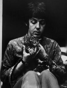 Paul McCartney with a kitten (one of many photos of Paul with cats and kittens)