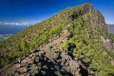 Wandern auf La Palma - RogerRovira