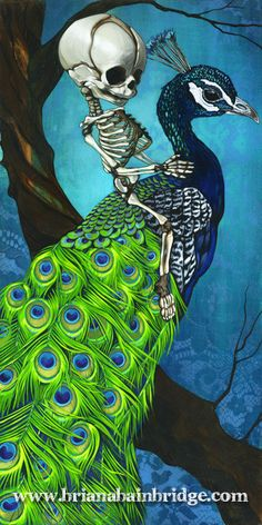 Baby skeleton with peacock 9 x 18 art print by BrianaBainbridge