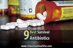 The 9 Best Survival Antibiotics