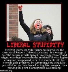 liberal-stupidity-breitbart-journalist-milo-yiannopoulos-vis-politics-1455154898.jpg (640×677)