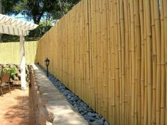 Astounding Front yard fence gate,Modern fence panels and Garden fence on sale. Bamboo Privacy Fence, Privacy Fences, Fence Landscaping, Backyard Fences, Pool Fence, Cerca Diy, Fence Design, Garden Design, Bamboo Landscape
