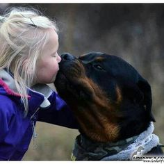 Thats love - sweet girl and #rottweiler