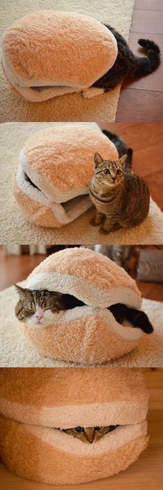 2coussins de chats cousus ensemble