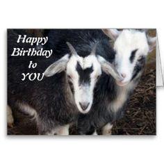 Happy birthday goat - photo#42