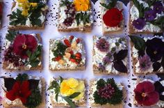 Too pretty to eat! Herb and flower blossom tea sandwiches with cream cheese spread. Tapas, April Recipe, Cream Cheese Spreads, Flower Food, Flower Seeds, Incredible Edibles, Tea Sandwiches, Blossom Flower, Flower Tea