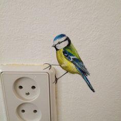 #Birds  #pimpelmeesje . Speciaal voor gittepetit. Wat leuk van die pimpeltjes. Ik kan niet reageren ( knopje werkt niet).