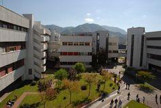 Anche lUniversità di Salerno ospiterà lAcademy Apple per sviluppatori